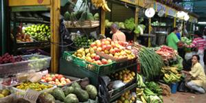 Vegetable stall in the Plaza Minorista